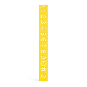 Yellow Ruler,Yellow,hi-res