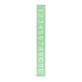 Mint Ruler,Mint,hi-res