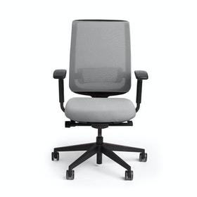 Gray Reply Task Chair, Adjustable Arms, Adjustable Lumbar