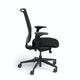 Black Reply Task Chair, Adjustable Arms, Adjustable Lumbar,Black,hi-res